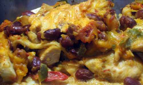 Santa Fe Mexican Lasagna Recipe
