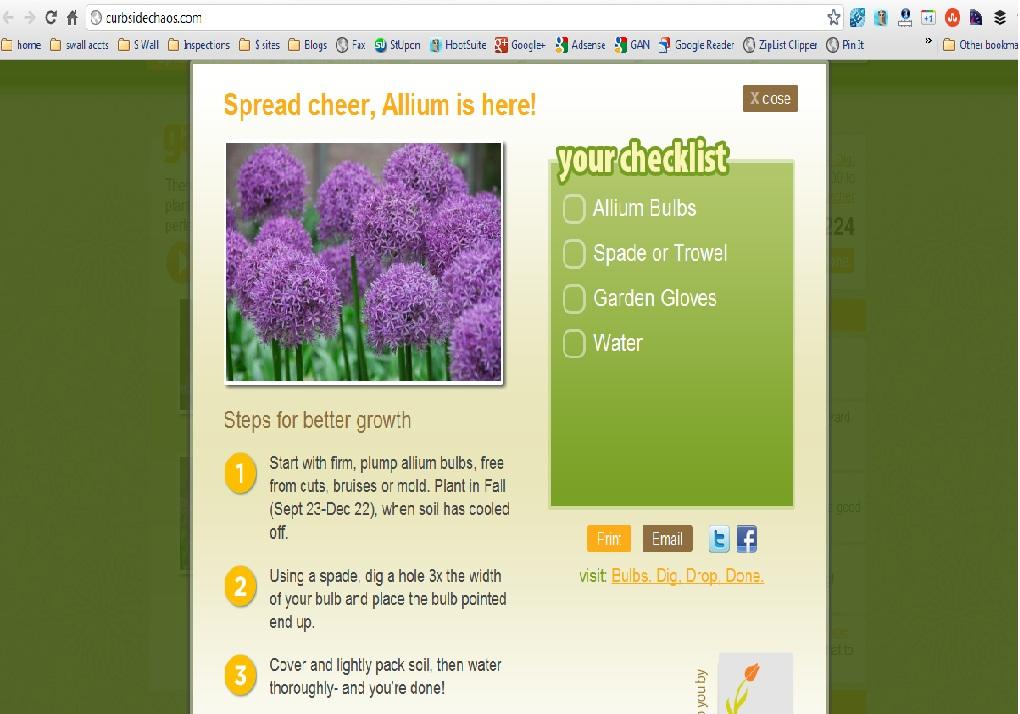 Garden Guru Bulb Flower Tool